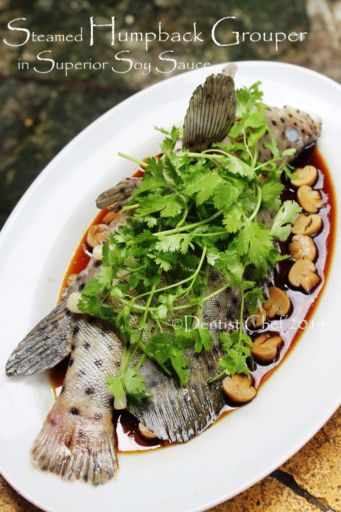 Chinese Style Steamed Mouse Grouper Fish With Soy Sauce Ginger Scallion And Cilantro Resep Ikan Kerapu Bebek Tikus Tim Hongkong Resep Ikan Resep Makanan Resep