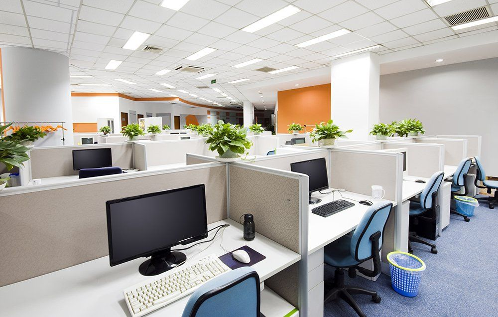 You have plants in your house, but what about your office? These six air cleaners and mood lifters will thrive in a variety of conditions.