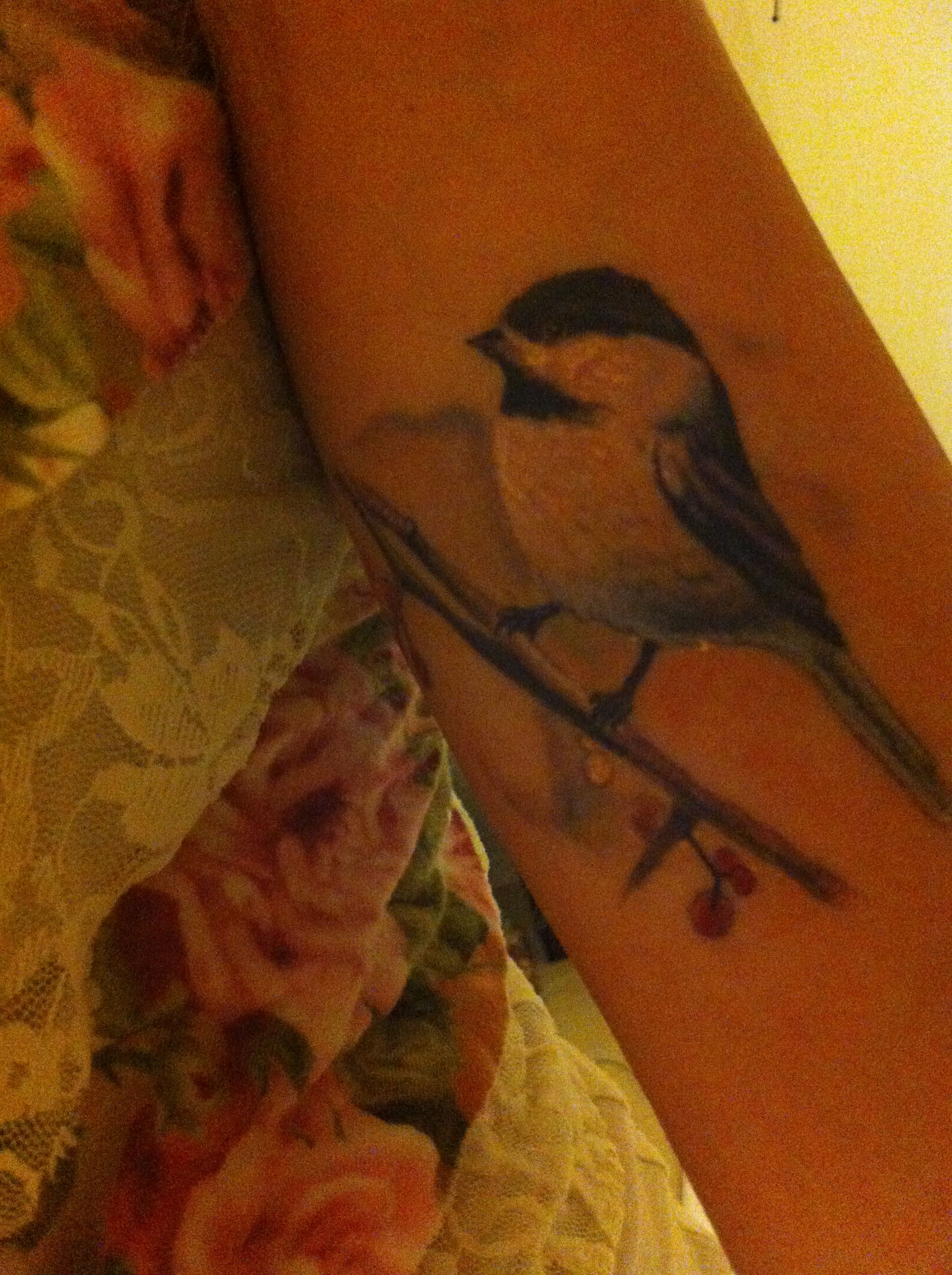 Beautiful Realistic Chickadee Tattoo By Australian Realism: Chickadee Tattoo Chronic Ink Toronto