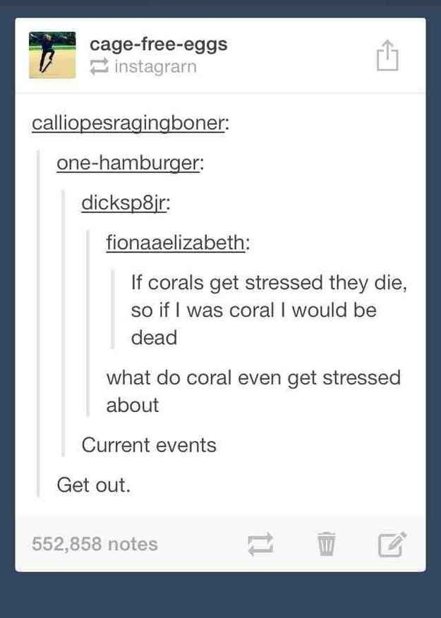 The time they contemplated the mental health of sea coral. | 32 Times Tumblr Was Too Clever For Its Own Good
