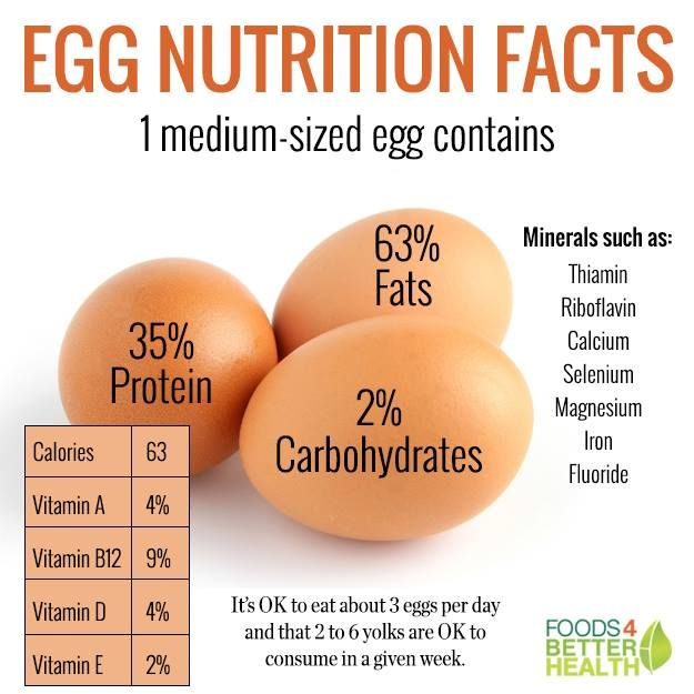Image result for egg nutrition