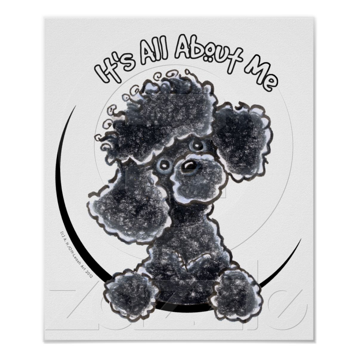 Black Toy Poodle   dog grooming shop ideas   Pinterest   Caniche ...