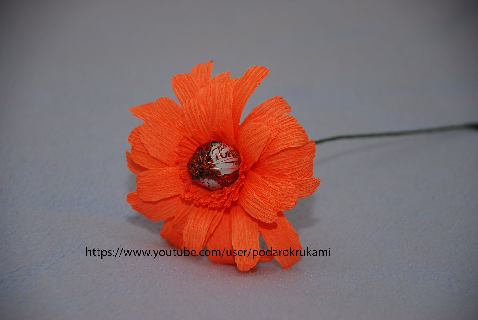 Gerbera From Sweet And Paper