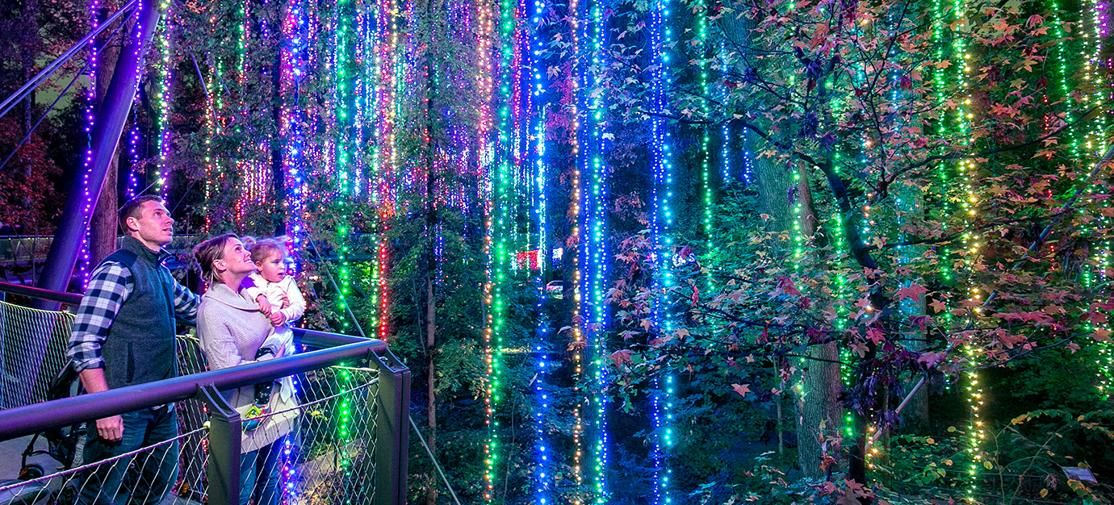 28b251df54b0c77d069ed8fd0ea1e5d4 - Atlanta Botanical Gardens Light Show Promo Code