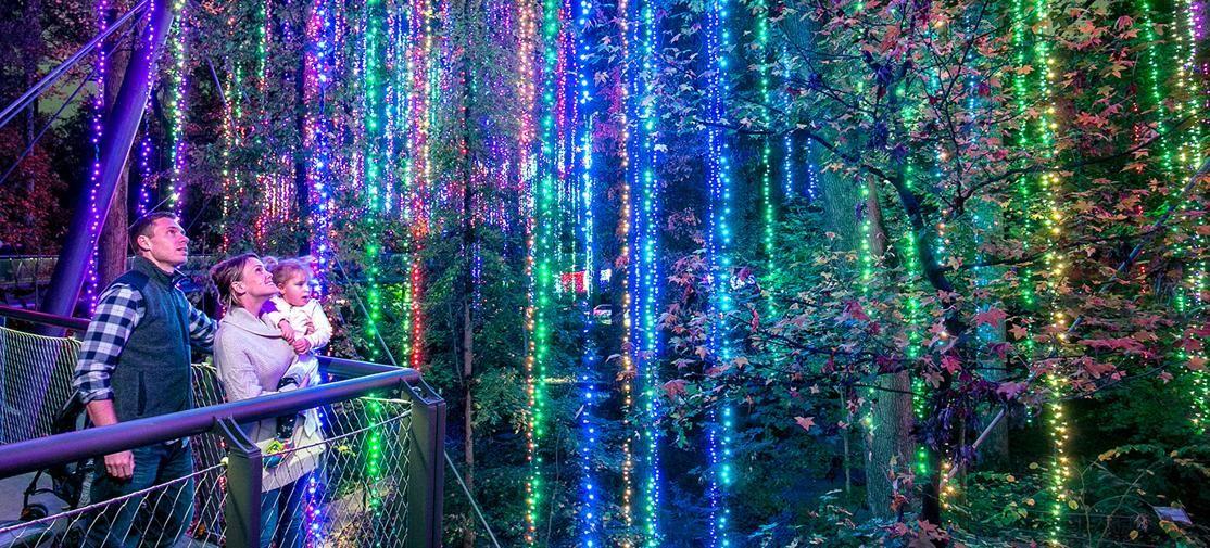 28b251df54b0c77d069ed8fd0ea1e5d4 - Birmingham Botanical Gardens Lantern Festival 2019