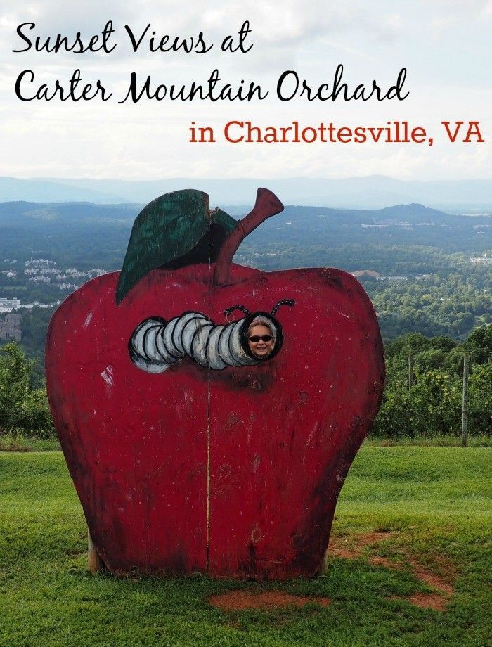 Best Sunset In Charlottesville At Carter Mountain Orchard