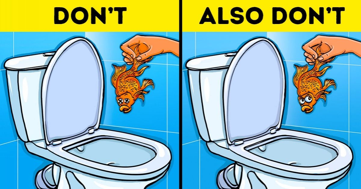 how to fix a toilet that won't flush all the way