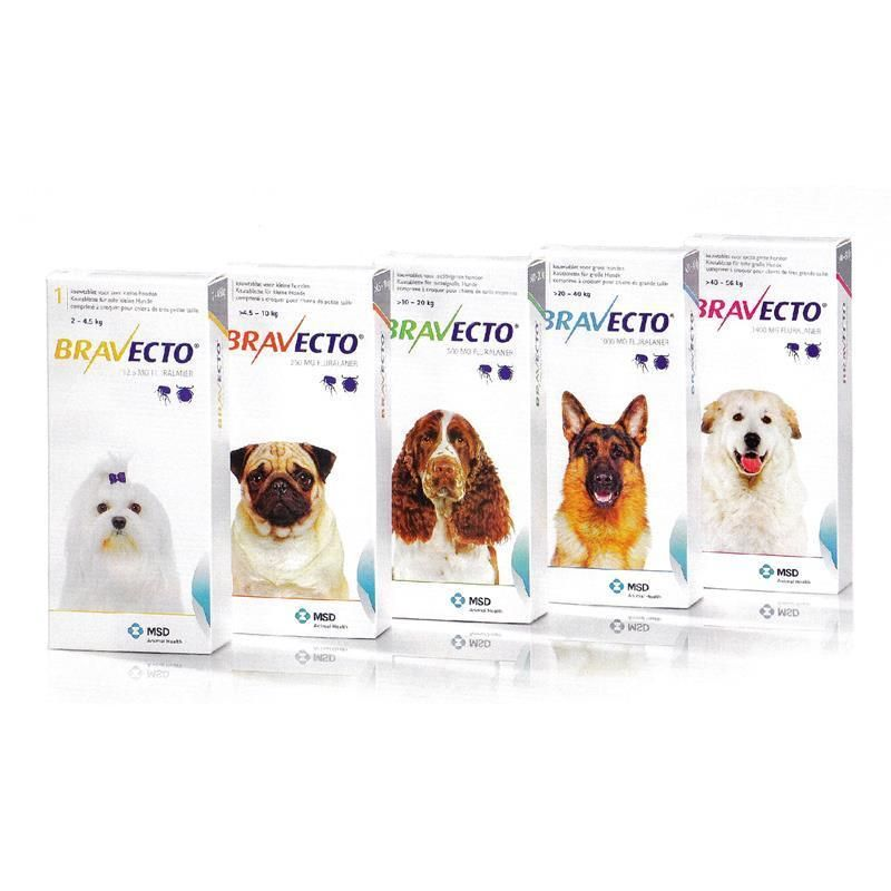 Bravecto Flea Tick Control For Dogs 4 4 135 Lbs 2 56 Kg 1 3 Or 6 Pk Bravecto Tick Control For Dogs Flea And Tick Fleas
