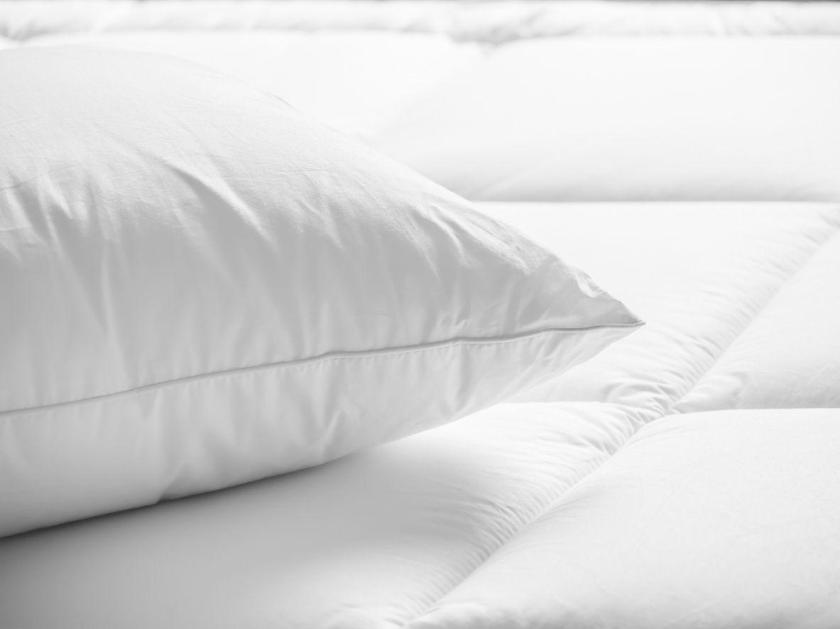 Skincare And Your Pillow Goose Down Pillows Pillows