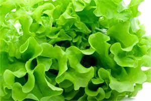 La chlorophylle protège des agents cancérigènes en les neutralisant et facilite leur élimination de l'organisme, mais à une condition!