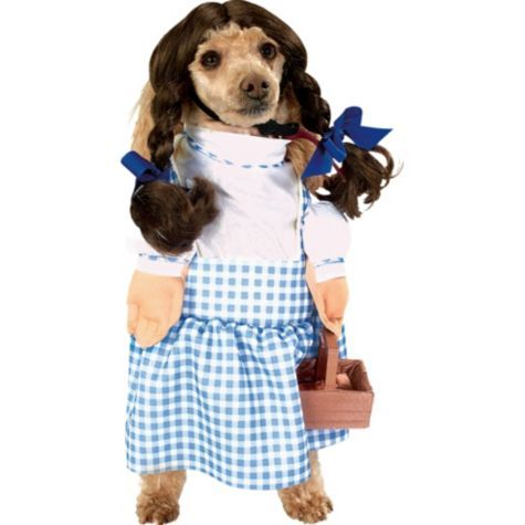 Wizard Of Oz Dorothy Dog Costume Party City Dog Halloween
