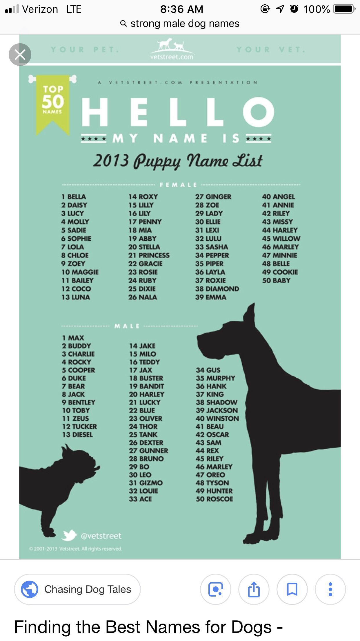 Pin By Ryssa On Animal Names Cat Or Dog Puppy Names Dog Names