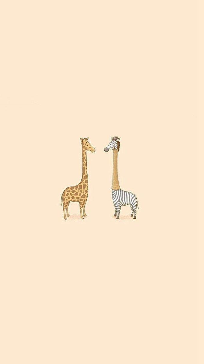 キリンとしまうーーま Giraffe Iphone Wallpaper Cute Giraffe