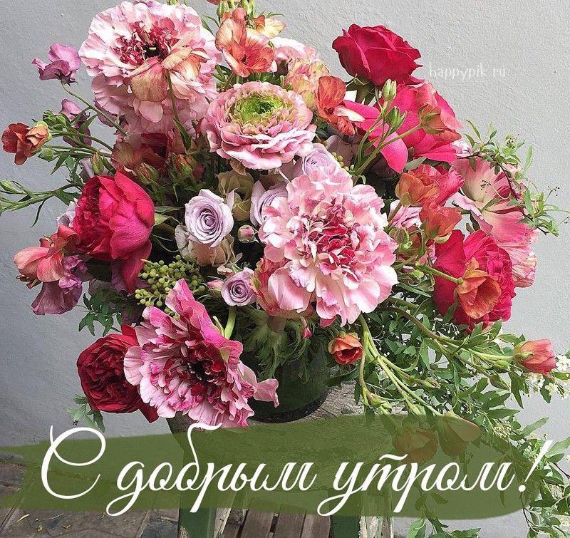 С добрым утром - цветы | Красивые цветы, Цветы, Доброе утро