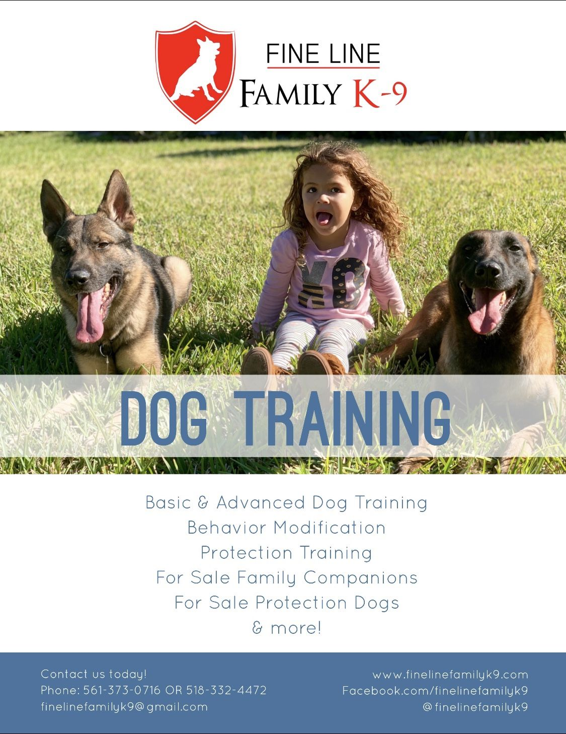 Dog With Behavioral Issues Let Us Help You Board And Train