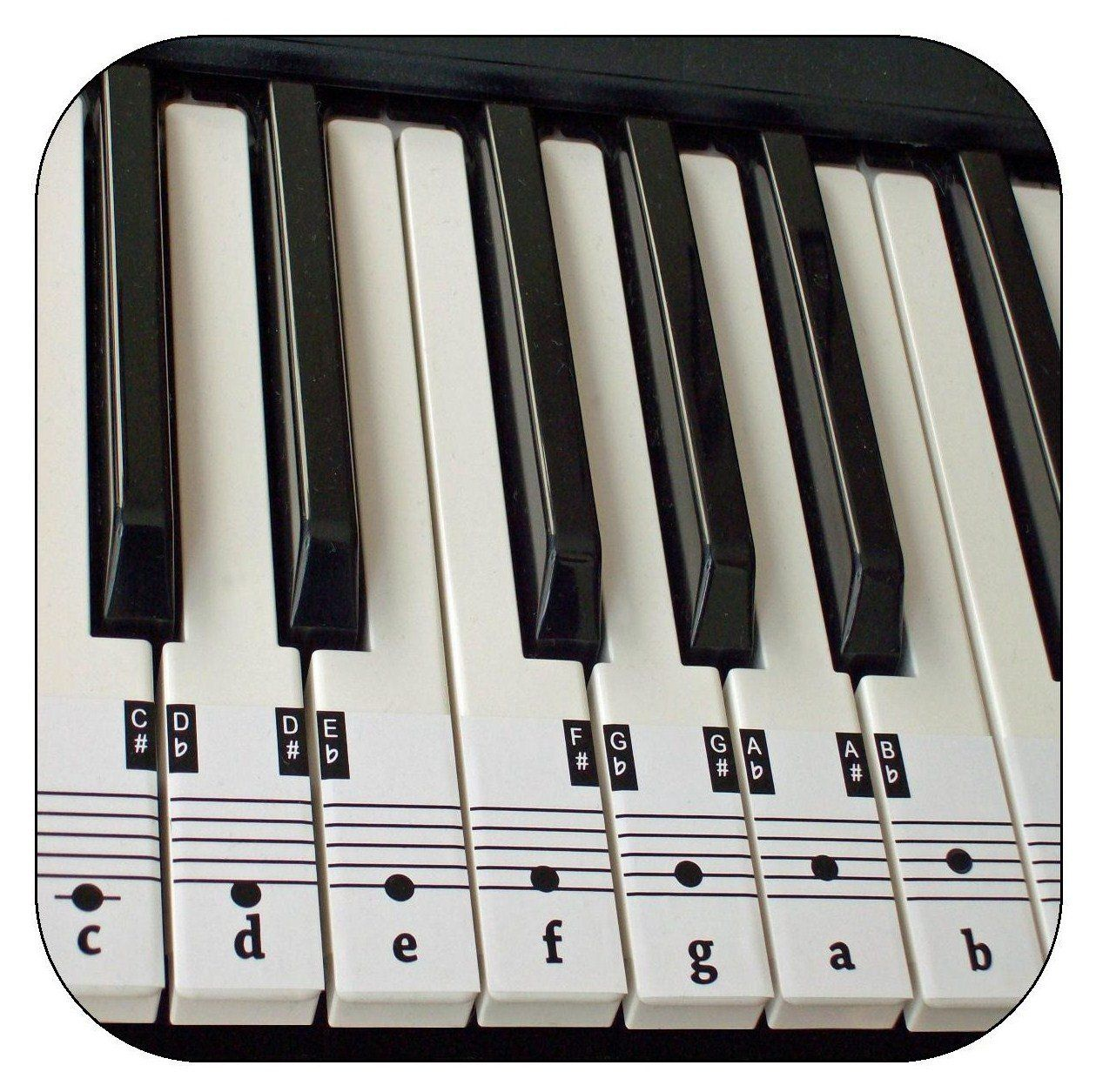 Beginners Piano Amp Keyboard Music Note Stickers Free