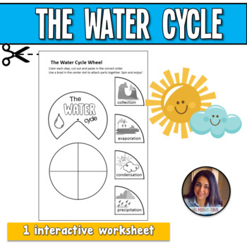 The Water Cycle Interactive Worksheet
