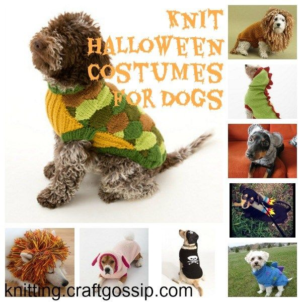 Halloween Costumes to Knit for Your Dog