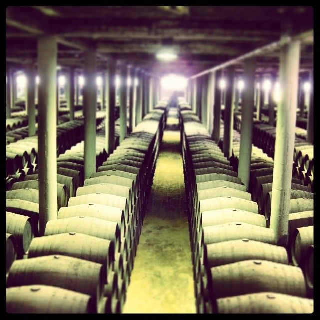 Bodegas catedral, los templos del vino de Jerez. Visita Jerez. Todo Jerez a tu alacance en www.maridajerez.com