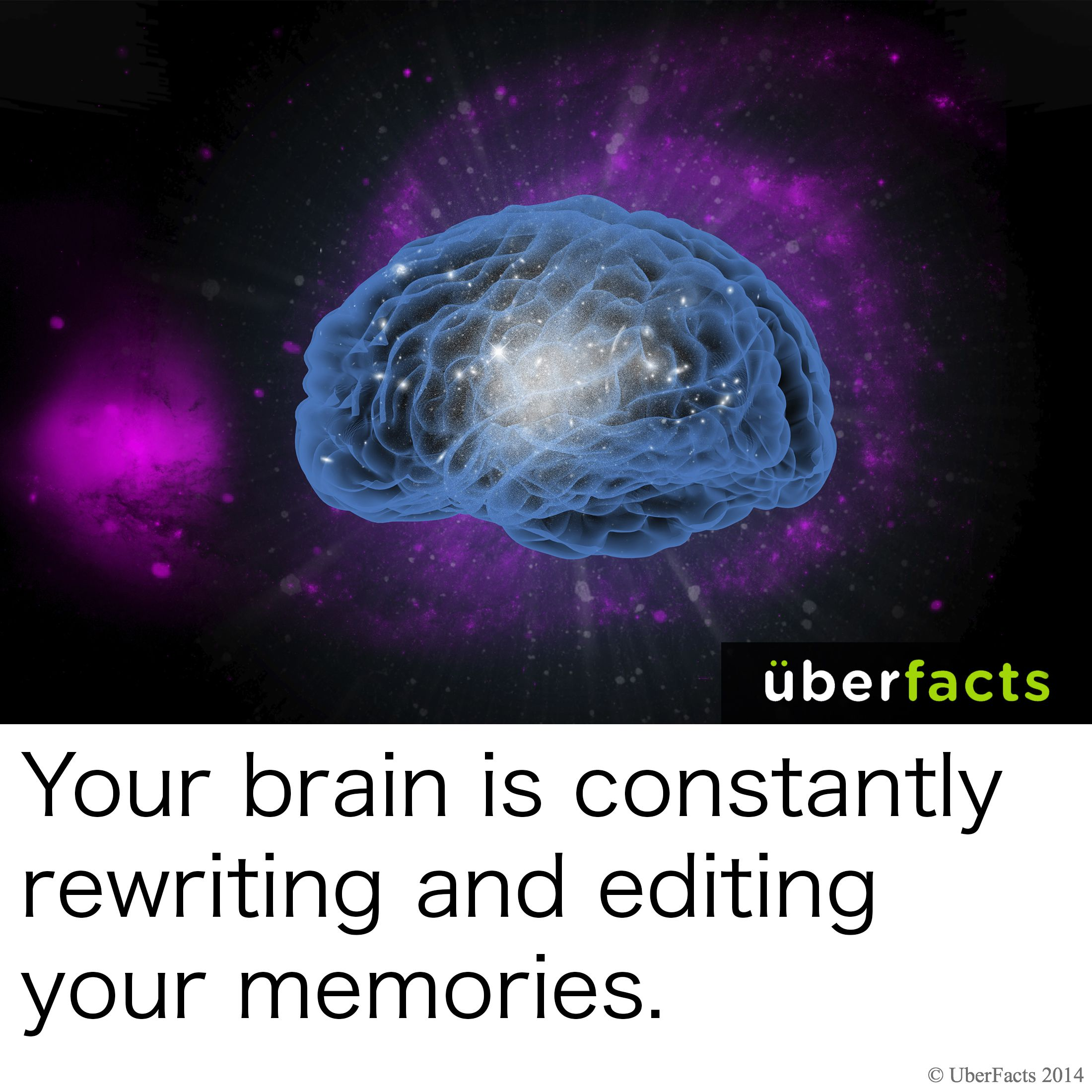 Science Facts Brain: #UberFacts #Science #Brain #Human