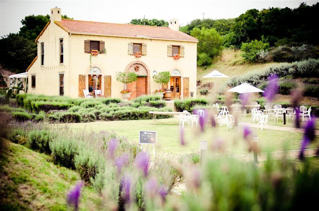 Our Wedding Venue - La Casa - The Lavender Barn in Port ...
