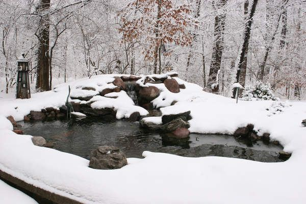 Backyard pond in the winter keep the pond from freezing for Koi pond freezing