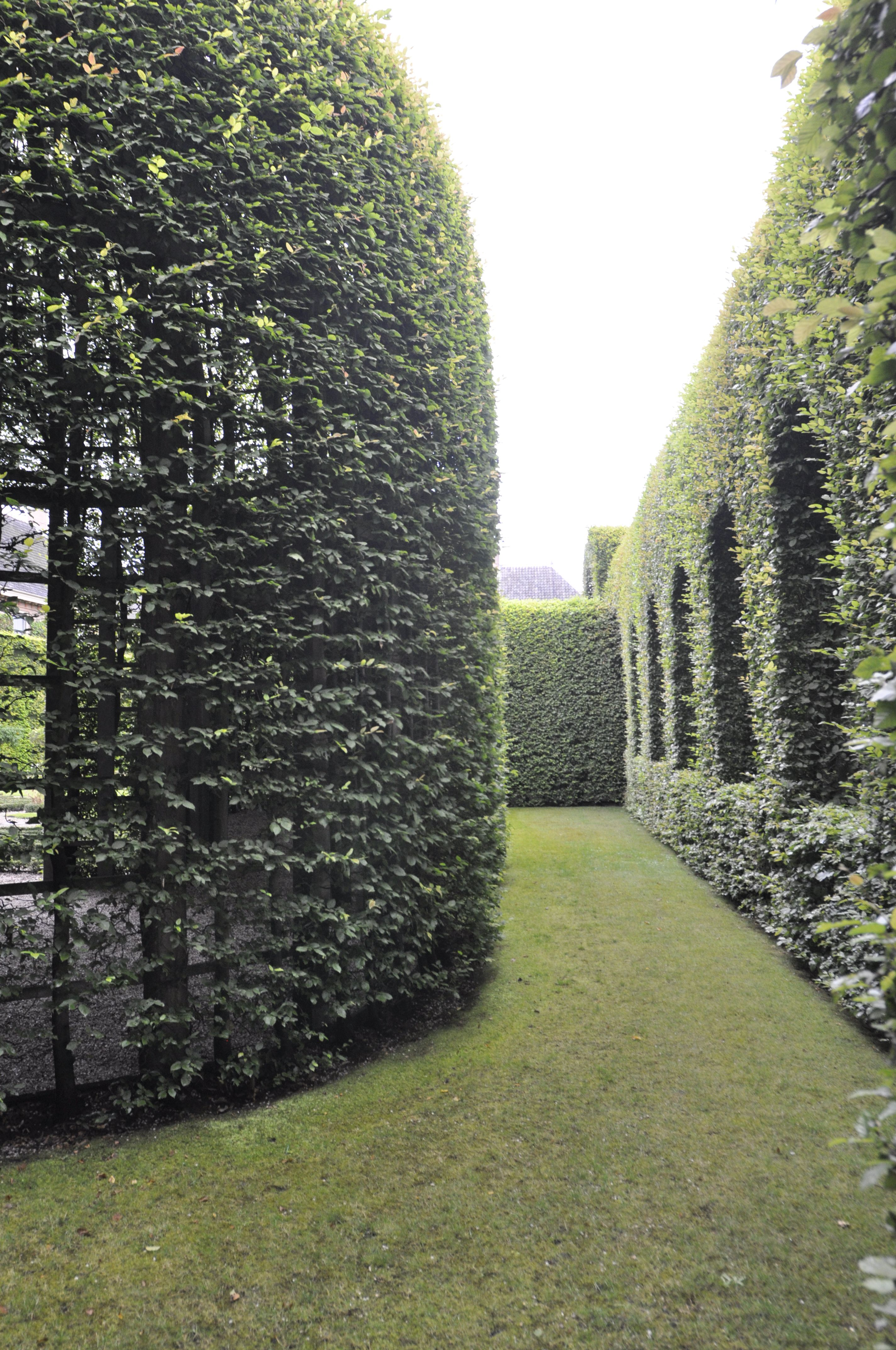 Garden inspiration palace het loo thinking outside the boxwood