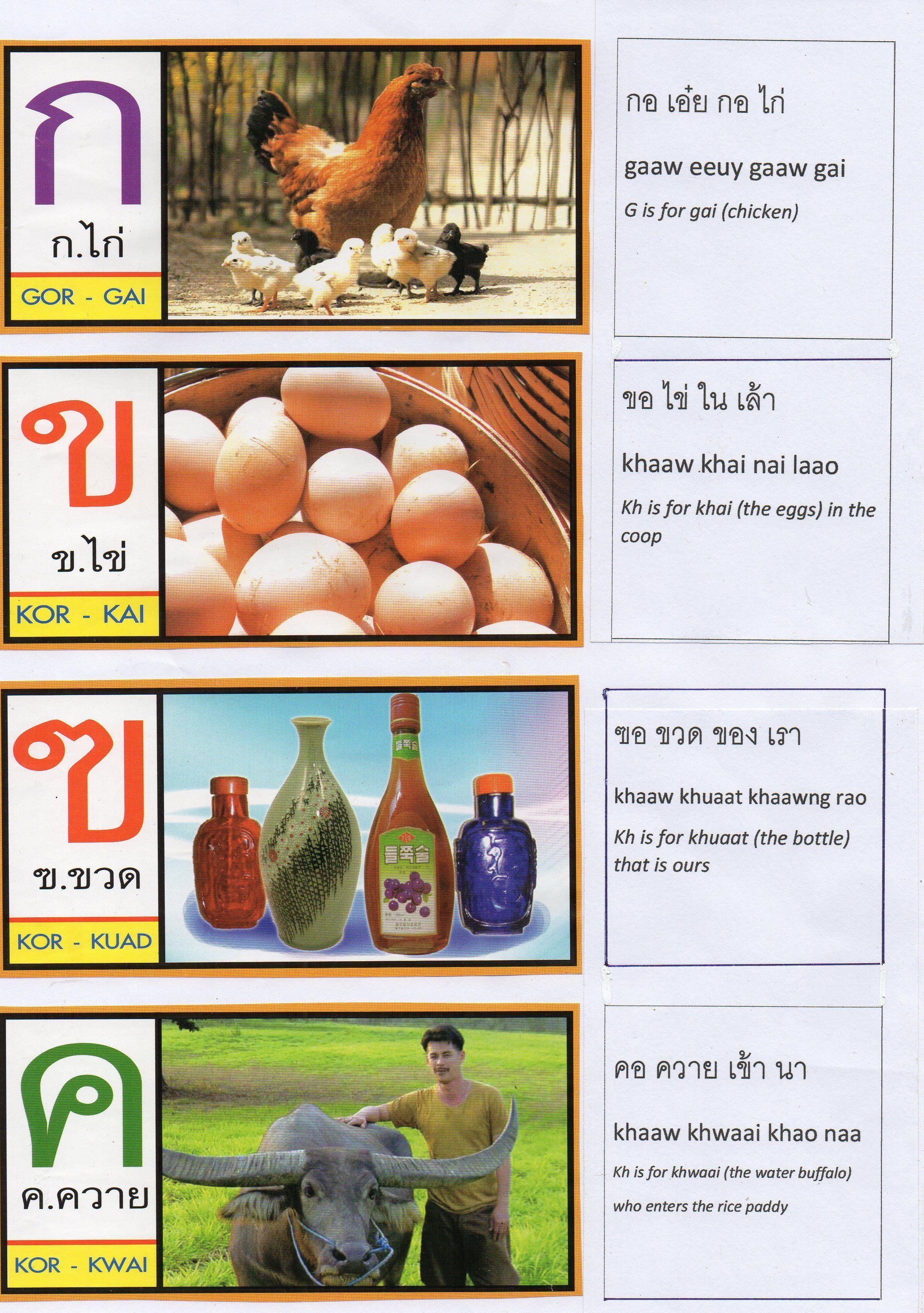 Thai Alphabet Song Lyrics Page  Thai Language    Buckets