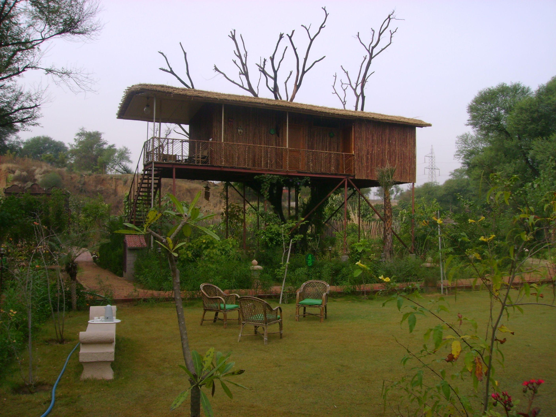 Tree House Jaipur Tree House Resort  Jaipur, India Jaipur