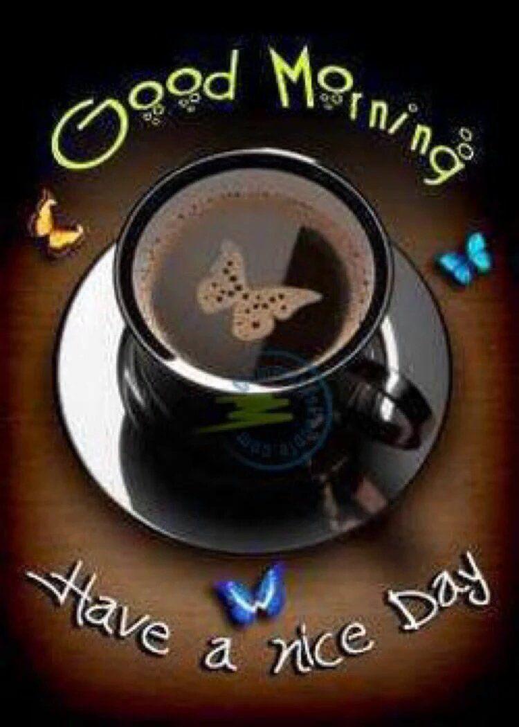 Michelle D Boyce On Twitter Good Morning Coffee Good Morning Quotes Funny Good Morning Memes