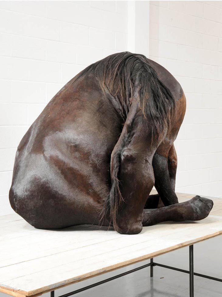 Berlinde de Bruyckere brings awareness to animal suffering through art