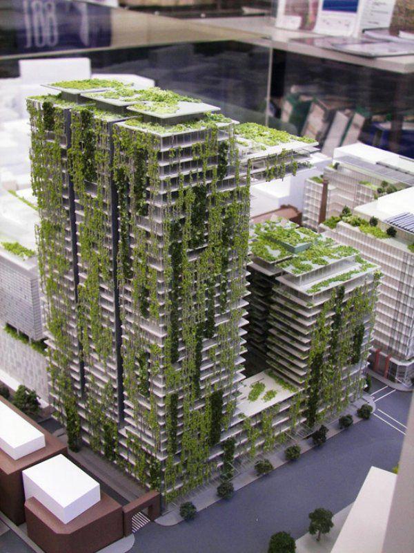 Living Walls Green Walls Fachada Verde Arquitetura Ecologica
