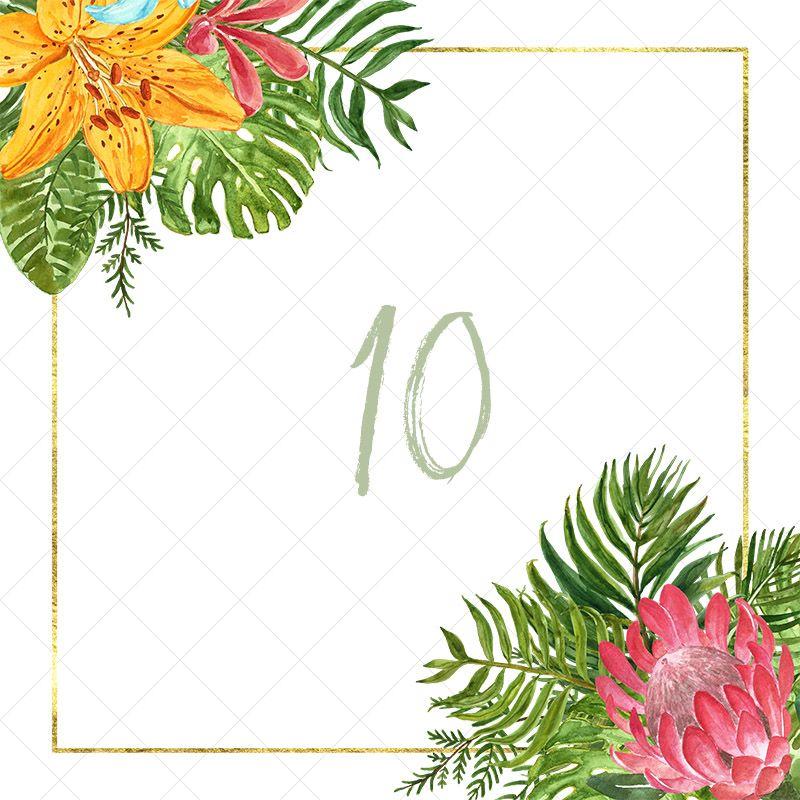 Watercolor Tropical leaf Floral border clipart frames
