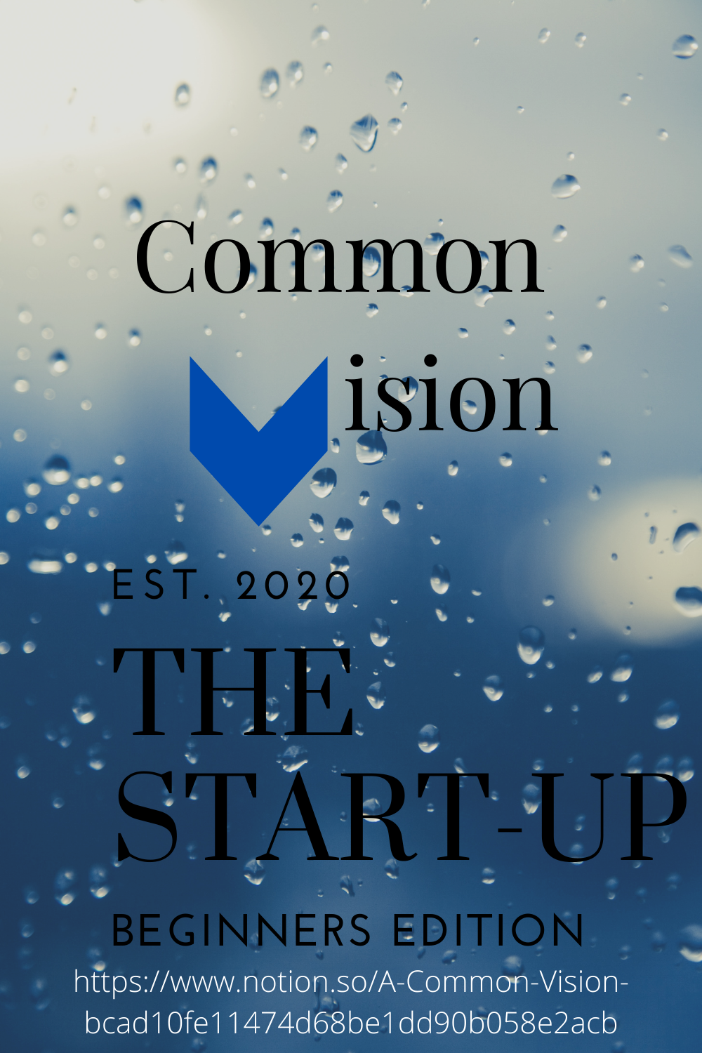 A Common Vision Vision And Mission Statement Vision Statement Visions