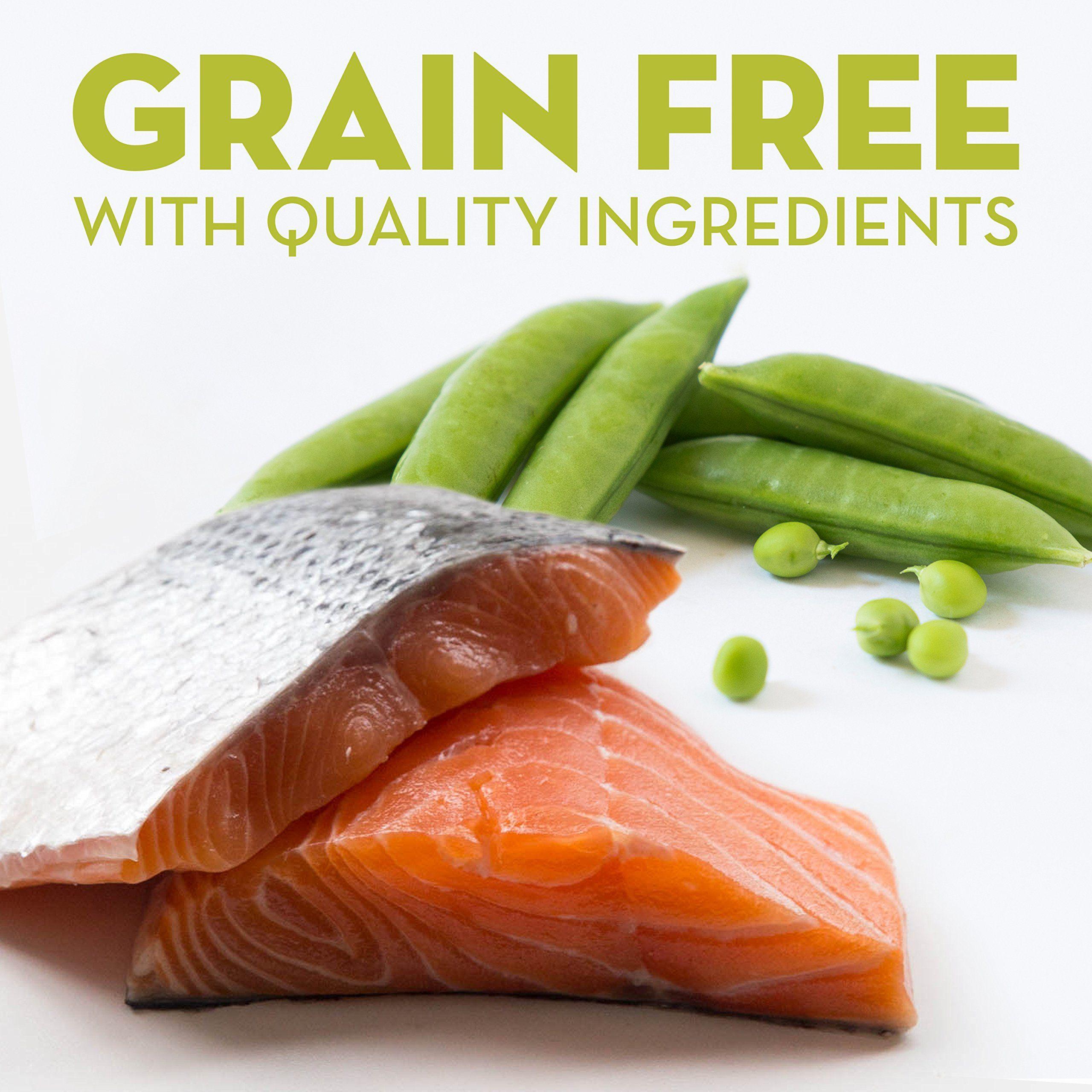 nature's recipe grain free salmon
