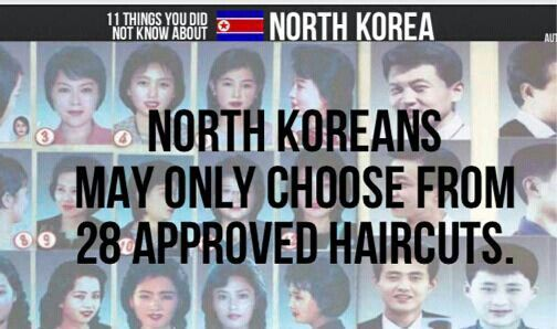 But What If Your Bald In North Korea North Korea Pinterest