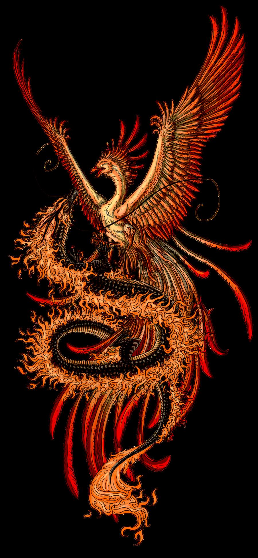 Like Tattoo Phoenix tattoos for women love it