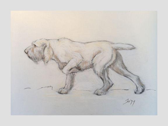Trigg studio sporting dog art lexington ky prints spinone trigg studio sporting dog art lexington ky prints solutioingenieria Image collections