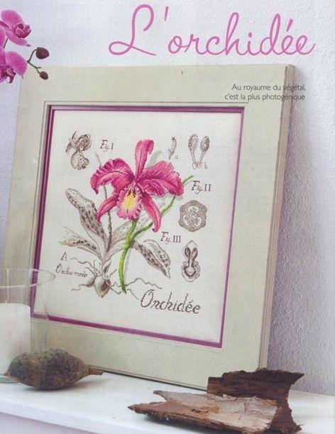 Orchid cross-steh, barva, vzor vyšívané cross steh schéma barevného tlačítka režimu, pohodlné barevné schéma výšivky, řada botaniky
