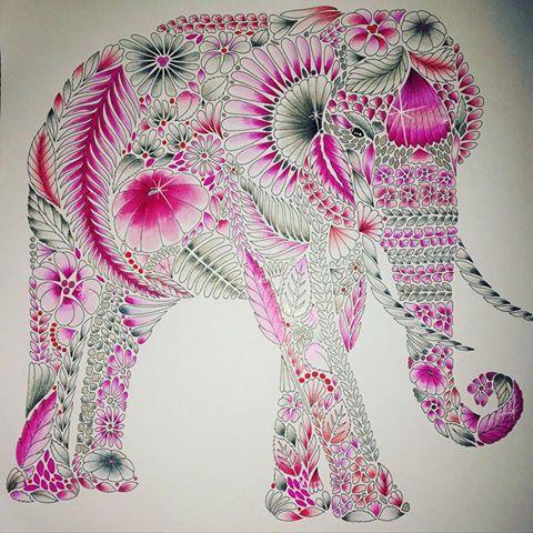 Coloring Ideas Elephant Millie Marotta Coloring Book Elephant Artwork Millie Marotta Animal Kingdom