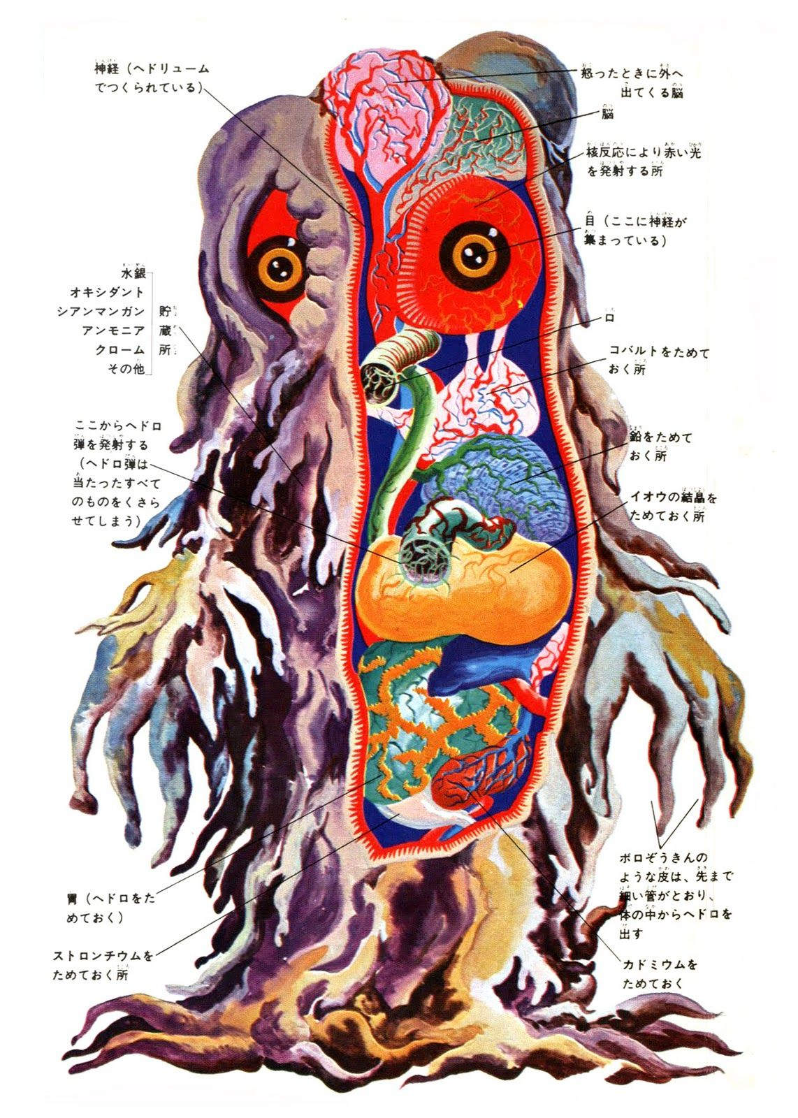 Don\'t know who the artist is, but I found these great anatomical ...
