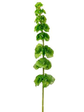 Silk Bells Of Ireland Spray In Green 29in Tall Silk Flowers Wedding Flower Spray Wedding Flower Stems