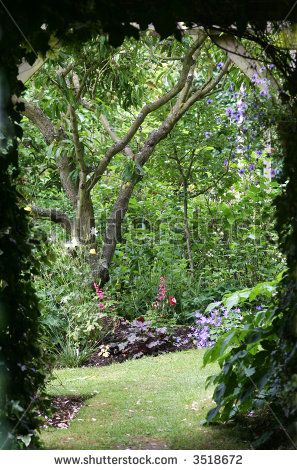 Shady path leading to another section of the garden