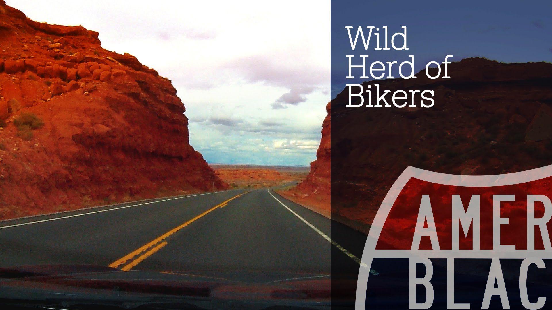 Harley Davidson Motorcycles - Wild Herd of Bikers in African Arizona