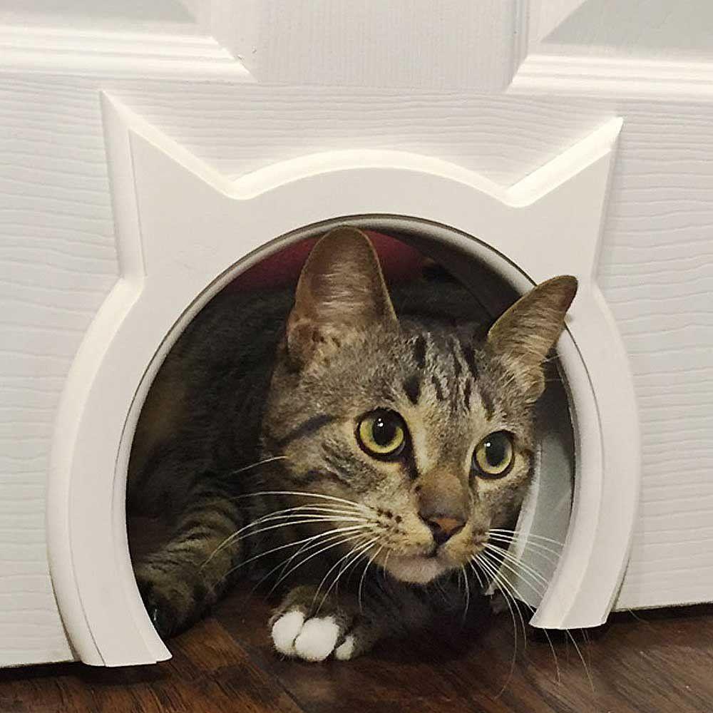 Kitty Pass Cat Door Pet Door Hidden Litter Boxes