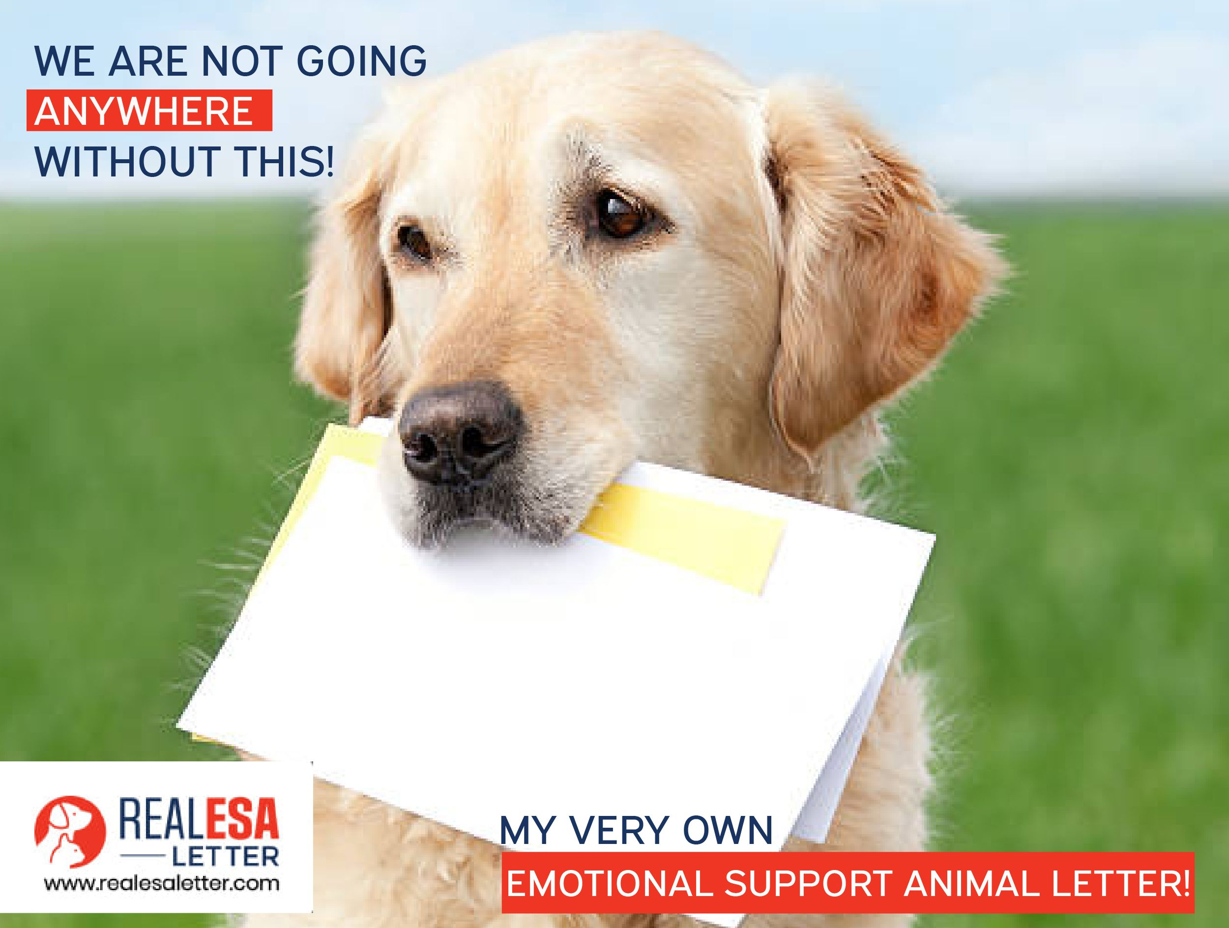 Don't walk around without your ESA letter With us by your