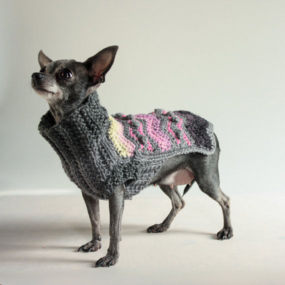 Chevrons and Bobbles Oh My XXS Chihuahua by HepzibabaBowWow