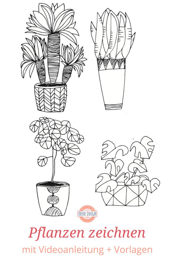 Pflanzen Zeichnen Für Anfänger Zeichnen Lernen Zeichnen Mit