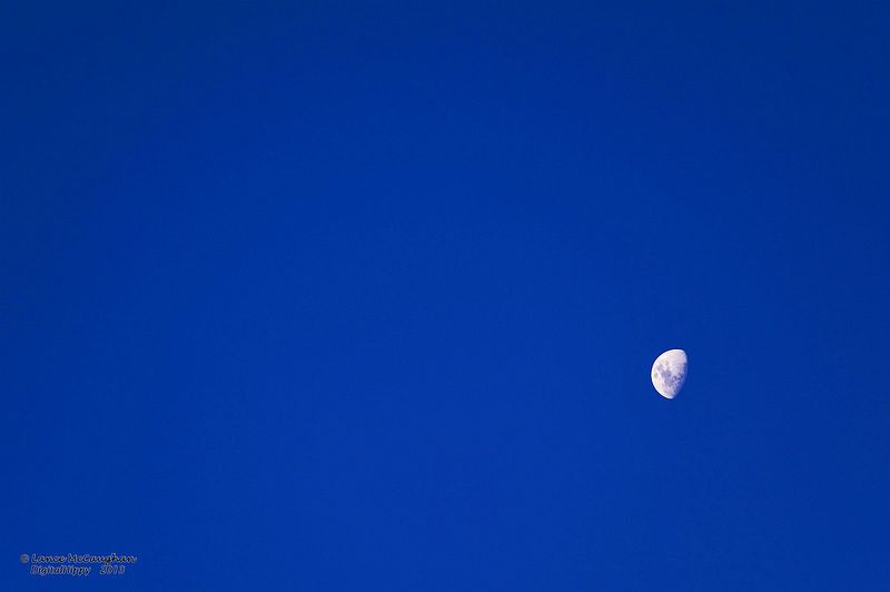 Moon During Day