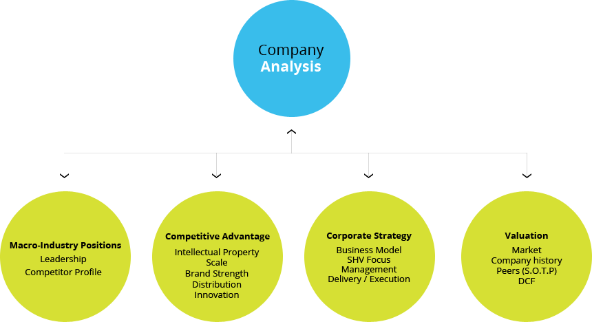 Amazing Company Analysis Model   Google Search